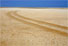 Namibian Coast Conservation and Management Project