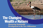 Cover of the Changing Wealth of Nations