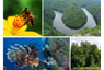 Photo: Montage of ecosystems